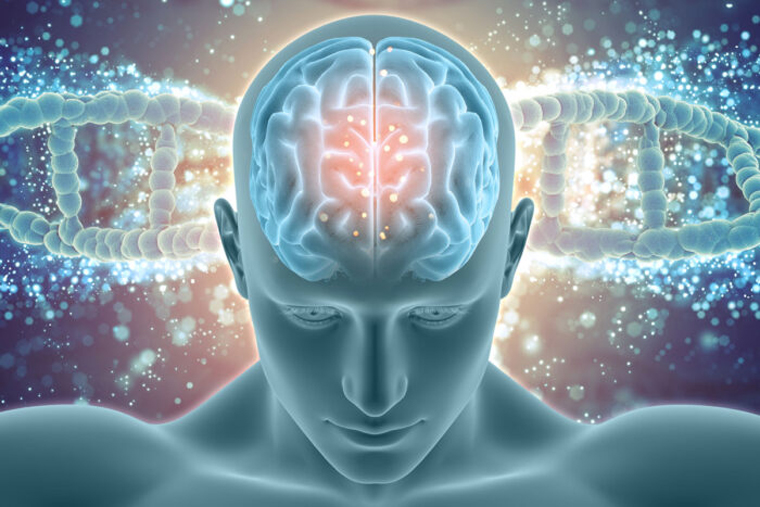 WashU, Pitt awarded $10.7M for Alzheimer's research