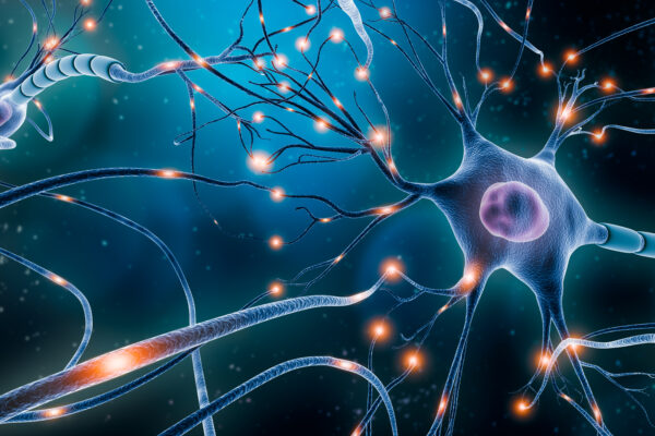 Ching, Sinopoli to study brain dynamics, learning
