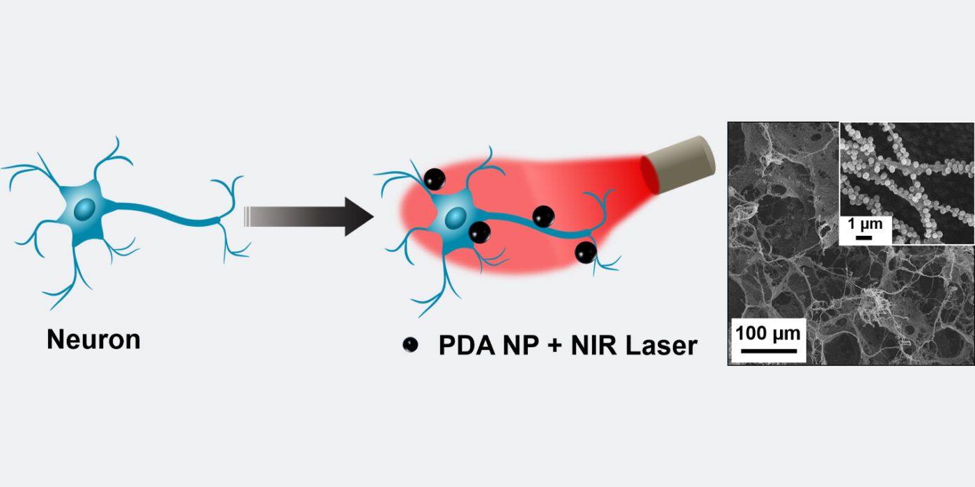 Nanoparticles create heat from light to manipulate electrical activity in neurons