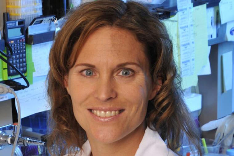 Sheila Stewart, MD, PhD