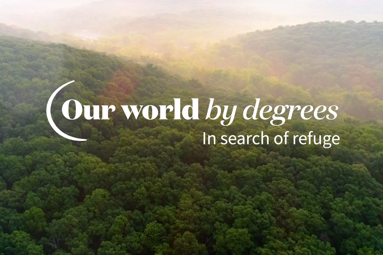 In search of refuge