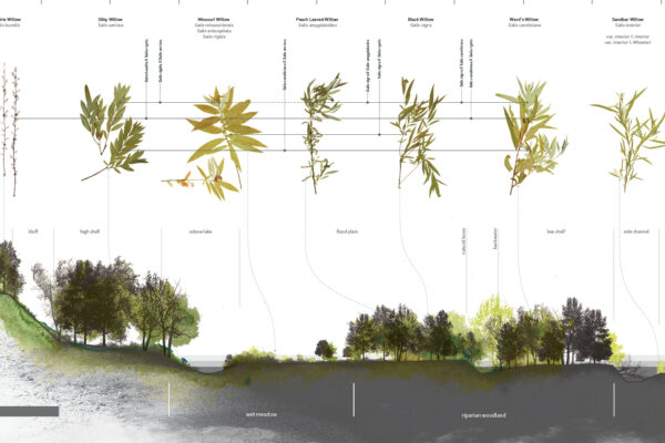 Huang, Whitaker win national landscape architecture honors